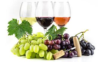 Prodotti Erimex Vini